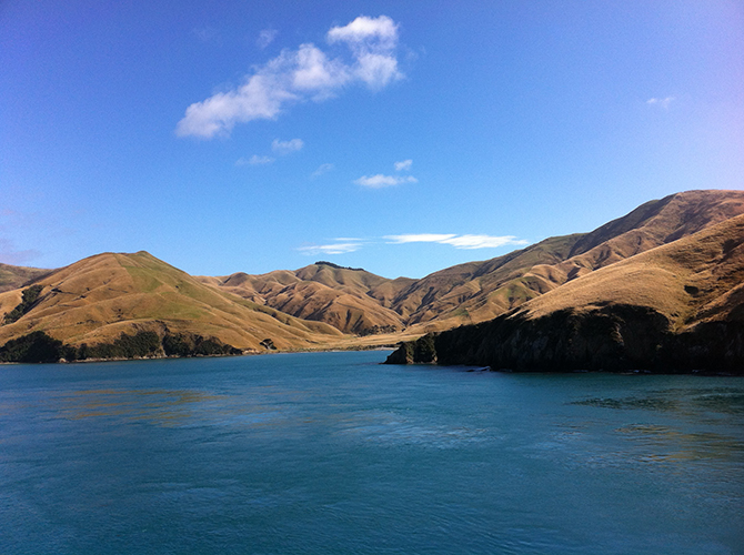 Nieuw Zeeland mama glossy